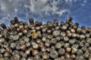 Holz: ohne großen Arbeitsaufwand heizen!